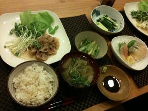 7月18日の夕飯、豚の生姜焼きとお刺身ともろきゅうと野菜のお浸し