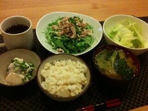 気がついたら今日のご飯は割と緑。豚しゃぶとレタスサラダと冷奴とお味噌汁